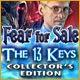 http://adnanboy.com/2014/12/fear-for-sale-13-keys-collectors-edition.html